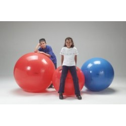 BALLON D'EXERCICE GYMNIC BALL 45 CM